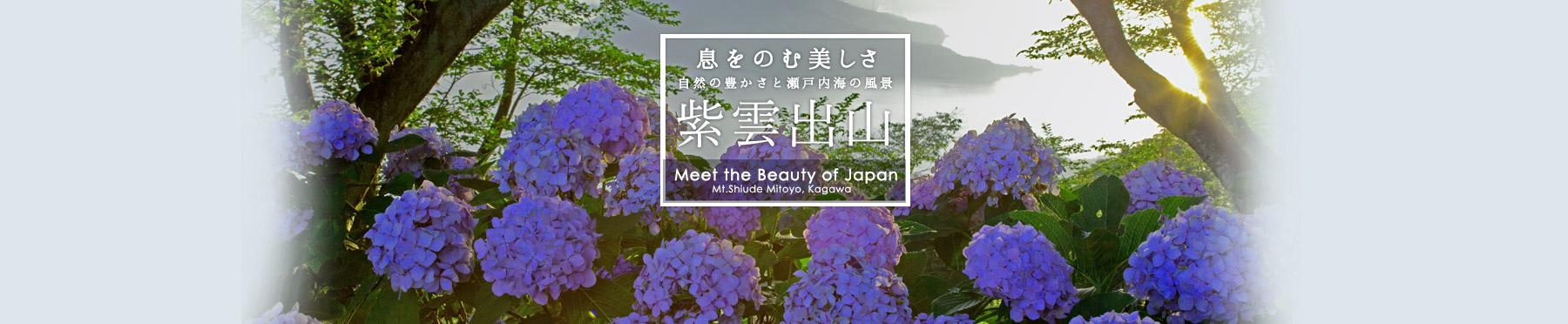 息をのむ美しさ自然の豊かさと瀬戸内海の風景紫雲出山
