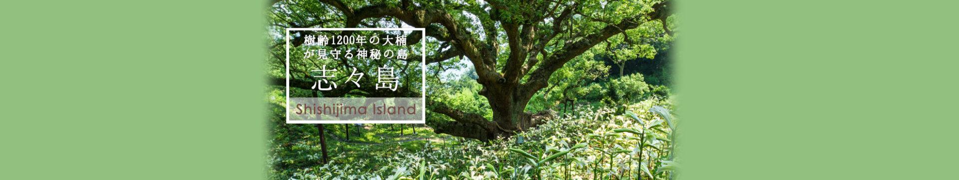 樹齢1200年の大楠が見守る神秘の島志々島