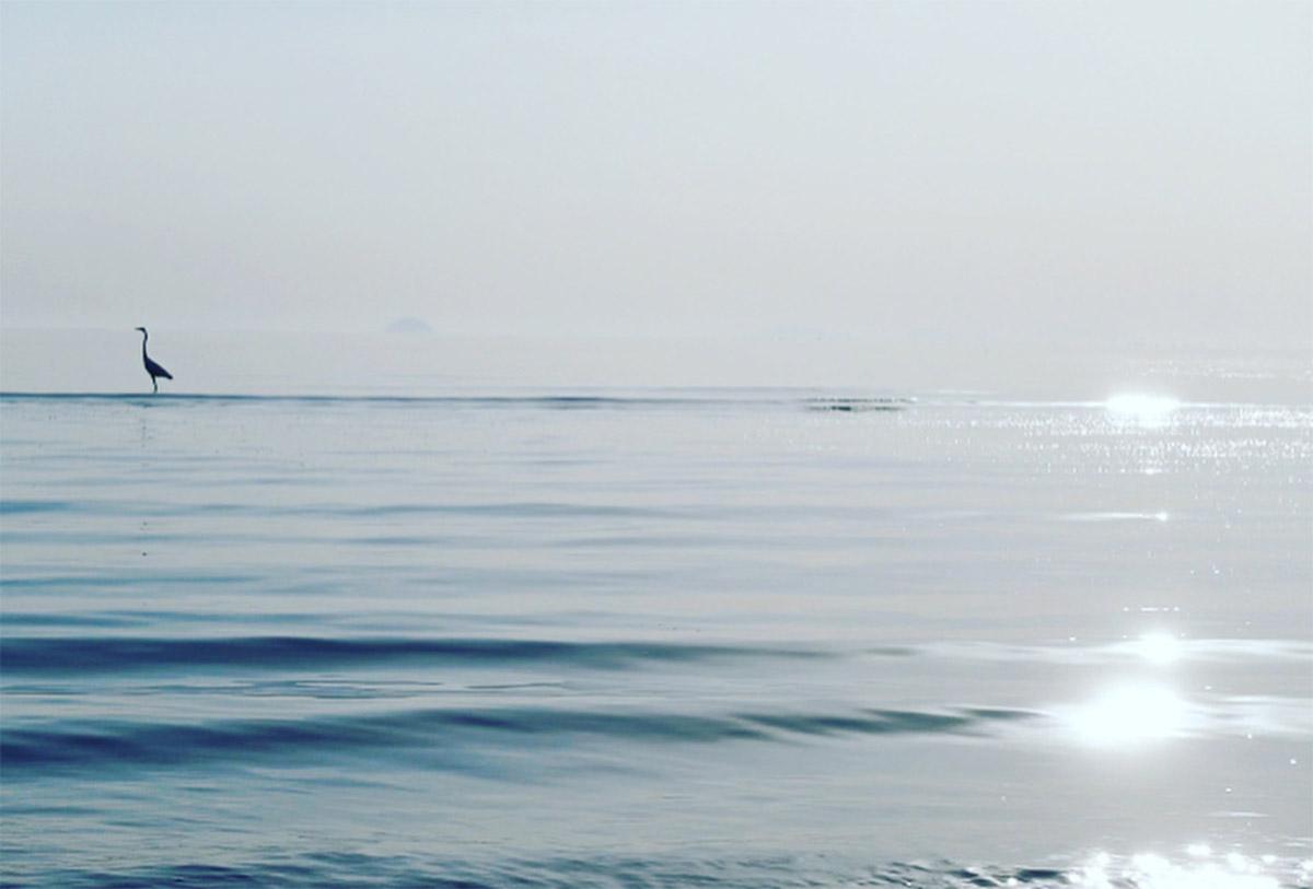@avonnuta 「銀の海」<br>[テーマ]A 自然の恵み