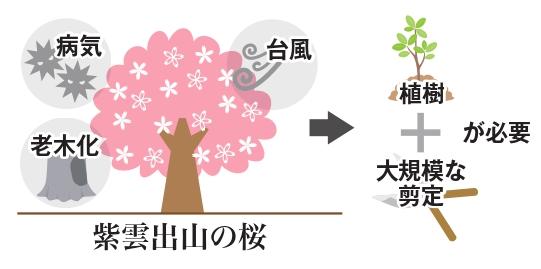 倒木、老木化、病気などの影響で植樹や大規模な剪定が必要